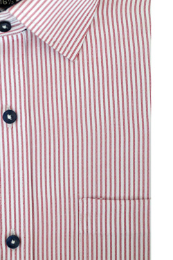 Maroon/White Stripes With Black Inner Cuff & Collar